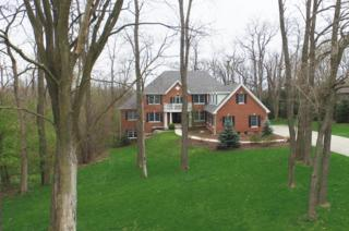 42  Timber Ridge Drive  , Yorkville, IL 60560 (MLS #08908311) :: The Jacobs Group
