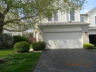 Downers Grove, IL 60515 :: The Jacobs Group
