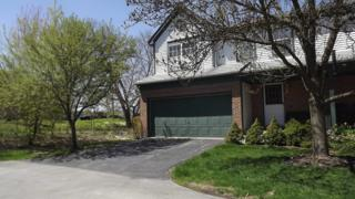 929  Old Oak Circle  , Algonquin, IL 60102 (MLS #08931907) :: The Jacobs Group