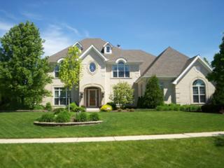 910  Auburn Lane  , Bartlett, IL 60103 (MLS #08932528) :: City Point Realty LLC
