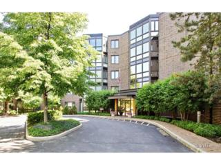 601  Mulberry Place  1F, Highland Park, IL 60035 (MLS #08632916) :: Jameson Sotheby's International Realty