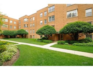 4901 N Wolcott Avenue  2B, Chicago, IL 60640 (MLS #08652582) :: Jameson Sotheby's International Realty