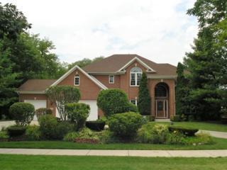 4302  Western Avenue  , Western Springs, IL 60558 (MLS #08701016) :: Jameson Sotheby's International Realty
