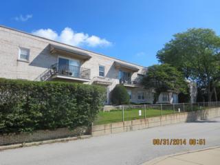 2103  St Johns Avenue  C, Highland Park, IL 60035 (MLS #08715918) :: Jameson Sotheby's International Realty