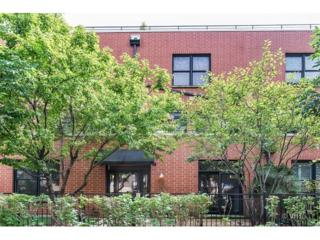 2355 W River Loft Court  , Chicago, IL 60618 (MLS #08716634) :: Jameson Sotheby's International Realty
