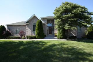 26060 W Lauren Drive  , Channahon, IL 60410 (MLS #08730091) :: Jameson Sotheby's International Realty