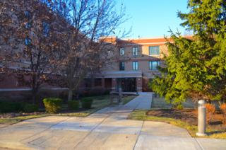 891  Central Avenue  234, Highland Park, IL 60035 (MLS #08765554) :: Jameson Sotheby's International Realty