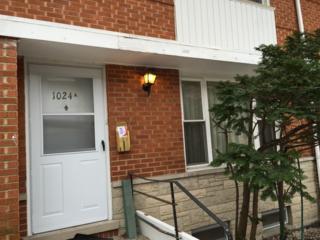 1024  Dodge Avenue  A, Evanston, IL 60202 (MLS #08800014) :: Jameson Sotheby's International Realty