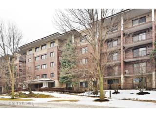 1700  2nd Street  402, Highland Park, IL 60035 (MLS #08817827) :: Jameson Sotheby's International Realty