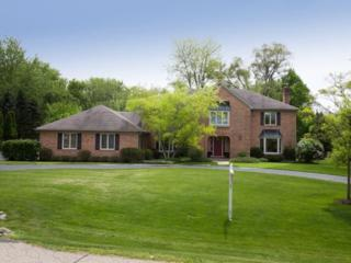 260  Pebble Creek Drive  , Tower Lakes, IL 60010 (MLS #08875714) :: The Jacobs Group