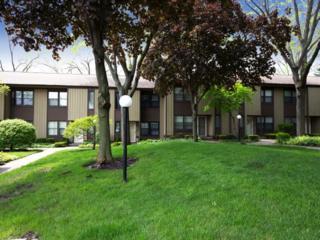 602 N Hough Street  B, Barrington, IL 60010 (MLS #08899986) :: The Jacobs Group