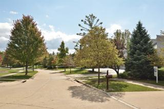 2092  Windy Hill Lane  , Highland Park, IL 60035 (MLS #08747237) :: Jameson Sotheby's International Realty