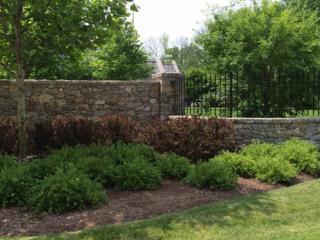1845  Berkeley Road  , Highland Park, IL 60035 (MLS #08758877) :: Jameson Sotheby's International Realty