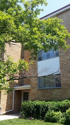209  Ridge Avenue  3A, Evanston, IL 60202 (MLS #08674755) :: Jameson Sotheby's International Realty