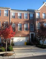 3522  Dental Court  , Edgewater, MD 21037 (#AA8418310) :: The Abrams Group of Re/Max Town Center@ Park Potomac