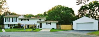 310  Sharon Drive  , Pasadena, MD 21122 (#AA8444509) :: The Abrams Group of Re/Max Town Center@ Park Potomac