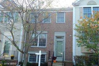 1042  Arborwood Place  , Chestnut Hill Cove, MD 21226 (#AA8484746) :: RE/MAX Premier