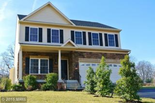 737  South Hammonds Ferry Road  , Linthicum Heights, MD 21090 (#AA8545274) :: Susan Scheiffley & Company Homes