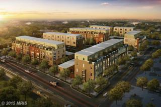 1134  South Lincoln Street  , Arlington, VA 22204 (#AR8589124) :: Your New Home Team Inc