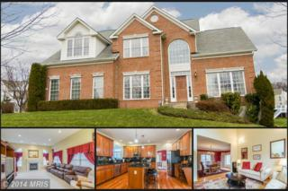 12301  Silver Cup Court  , Reisterstown, MD 21136 (#BC8519993) :: The Dailey Group