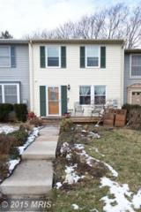 6  Fitzharding Place  , Owings Mills, MD 21117 (#BC8545281) :: Susan Scheiffley & Company Homes