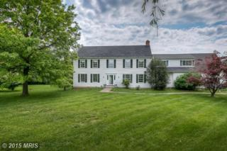 7  Louis Edward Court  , Cockeysville, MD 21030 (#BC8637979) :: The Dailey Group
