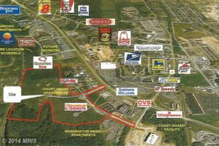 0  Lutz Courthouse Adams Avenue  , Martinsburg, WV 25401 (#BE8515335) :: The Abrams Group of Re/Max Town Center@ Park Potomac