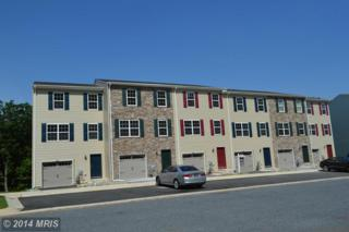126  Ben Boulevard  , Elkton, MD 21921 (#CC8493604) :: Fulcrum Properties Group