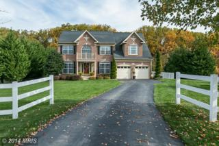 6276  Wheat Miller Court  , Mount Airy, MD 21771 (#CR8486087) :: Charis Realty Group