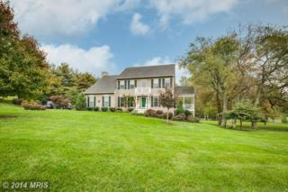 3155  Smart Heiress Drive  , Mount Airy, MD 21771 (#CR8487627) :: Charis Realty Group