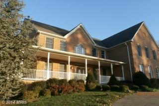 935  Stone Chapel Road  , Westminster, MD 21157 (#CR8508453) :: The Abrams Group of Re/Max Town Center@ Park Potomac