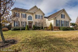 2219  Deer Park Road  , Finksburg, MD 21048 (#CR8515696) :: Susan Scheiffley & Company Homes