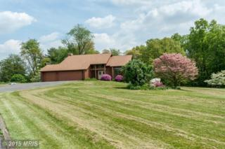 3841  Mount Airy Drive  , Mount Airy, MD 21771 (#CR8631974) :: The Speicher Group & RE/MAX Realty Centre