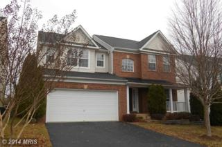 647  Holly Crest Drive  , Culpeper, VA 22701 (#CU8520366) :: The Abrams Group of Re/Max Town Center@ Park Potomac