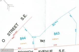 Branch Avenue SE , Washington, DC 20020 (#DC8293923) :: Jason Martin Group