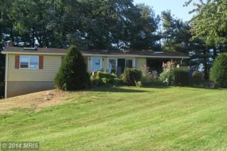 8519  Woodville Road  , Mount Airy, MD 21771 (#FR8484638) :: Charis Realty Group