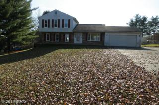 14003  Silver Fern Drive  , Mount Airy, MD 21771 (#FR8519361) :: Charis Realty Group