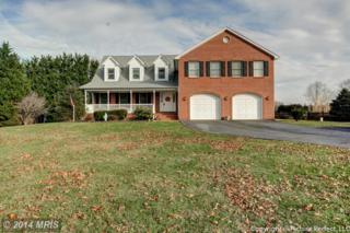 11656  Browningsville Road  , Ijamsville, MD 21754 (#FR8522566) :: Charis Realty Group