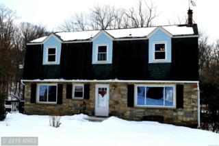 4217  Bill Moxley Road  , Mount Airy, MD 21771 (#FR8563537) :: The Maryland Group of Long & Foster