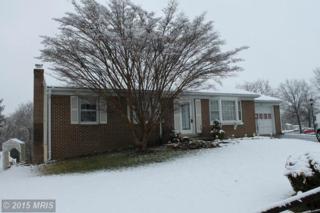 225  Wintergreen Lane  , Brunswick, MD 21716 (#FR8579961) :: Charis Realty Group