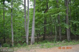 Fox  , Winchester, VA 22602 (#FV8366536) :: Team Waldo Realty