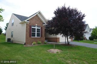 114  April Avenue  , Stephens City, VA 22655 (#FV8409283) :: Team Waldo Realty