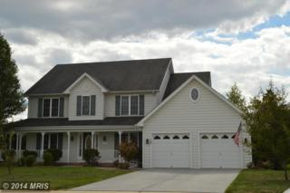 117  Branch Court  , Stephens City, VA 22655 (#FV8468908) :: The Maryland Group of Long & Foster