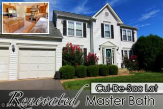 12102  Snow Shoe Court  , Herndon, VA 20170 (#FX8458201) :: Move4Free Realty LLC