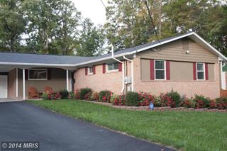 5506  Kings Park Drive  , Springfield, VA 22151 (#FX8489133) :: The Maryland Group of Long & Foster
