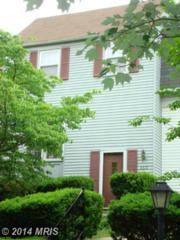 6611  Birchleigh Way  , Alexandria, VA 22315 (#FX8510317) :: The Abrams Group of Re/Max Town Center@ Park Potomac
