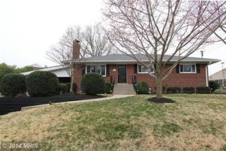 7017  Donna Circle  , Annandale, VA 22003 (#FX8521472) :: Your New Home Team Inc
