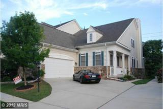 13014  Red Admiral Place  , Fairfax, VA 22033 (#FX8541772) :: The Abrams Group of Re/Max Town Center@ Park Potomac