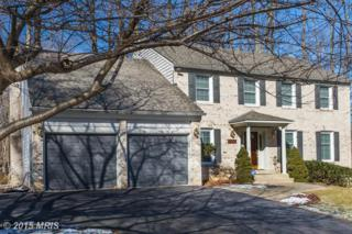 4805  Birch Lane  , Alexandria, VA 22312 (#FX8543710) :: The Abrams Group of Re/Max Town Center@ Park Potomac