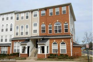 14250  Woven Willow Lane  B, Centreville, VA 20121 (#FX8551807) :: Your New Home Team Inc
